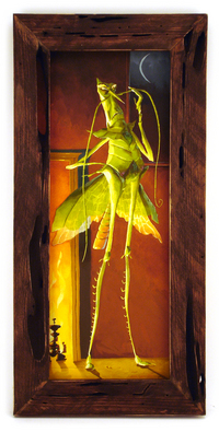 Mr. Katydid, Alex Kirwan