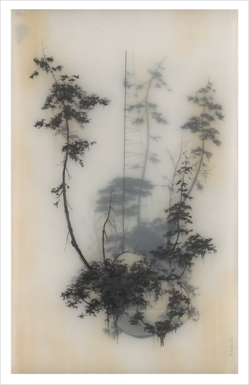 Held Up, Brooks Salzwedel