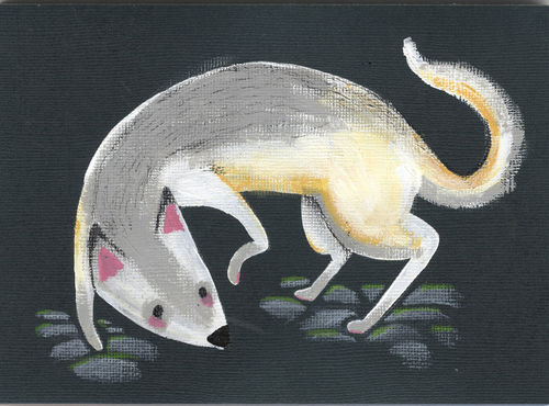 Canis Lupus, Cassie Kelly