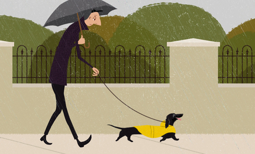 Man Walking Dog, Carly Schonberg