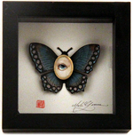 Cabinet of Curiosities Specimen no. 24 - The Blue Moth Eye Fly, Mab Graves