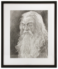 Gandalf the Grey, Iain McCaig