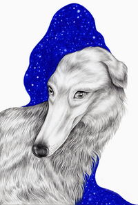 Let me draw your dog, Karina Eibatova