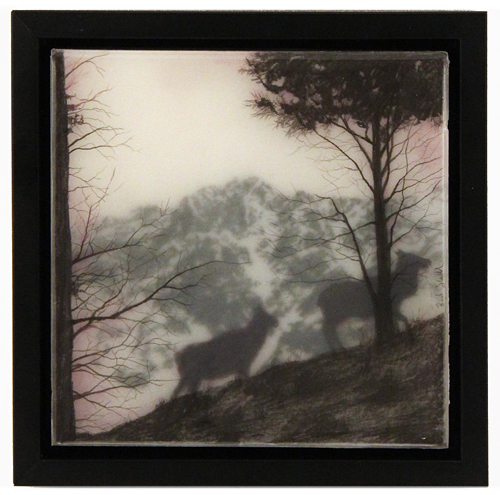 Two Elks, Brooks Salzwedel