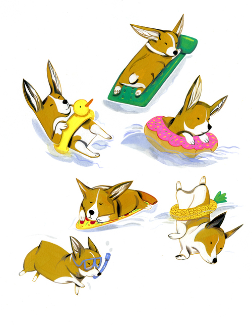Corgis of Summer , Jonathan Lau