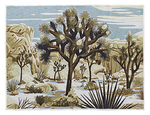 Chris Turnham Joshua Tree Blanket, Chris Turnham